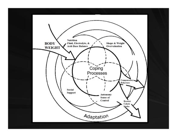 adaptation model of nursing